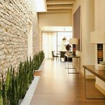 stone wall designs with plants in the hallway
