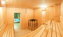 kompleks saun poleznye sovety